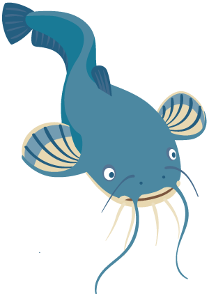 Catfish | VarageSale