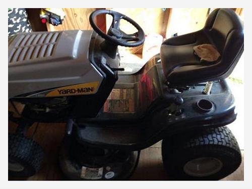 Lawnmower | VarageSale